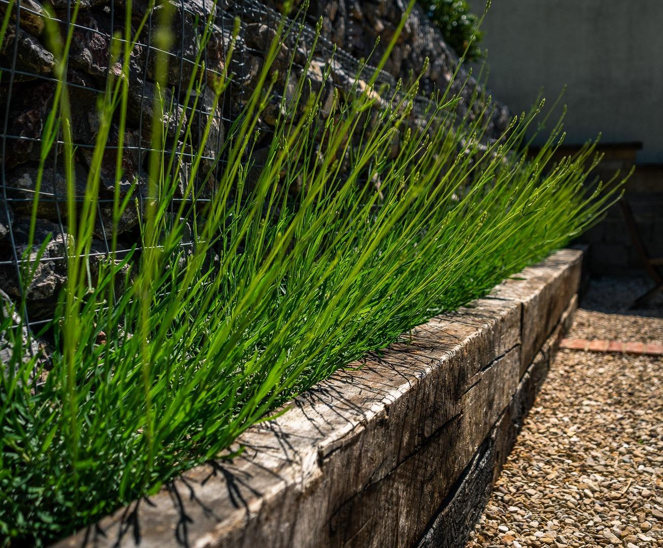 Stroud-Garden-Landscape-Design